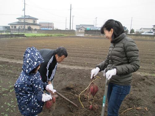 焼き芋01-04.JPG