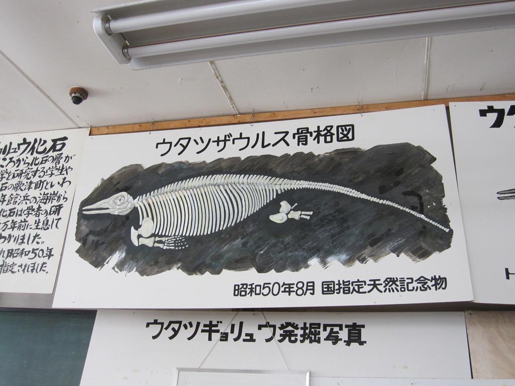 夏の歌津①-歌津魚竜を探しに-:...